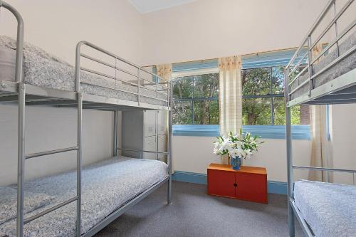 A bunk bed or bunk beds in a room at Blue Parrot Youth Hostel