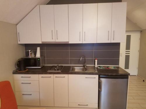 A kitchen or kitchenette at Birutės apartamentai