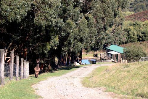A garden outside Johanna River Farm & Cottages