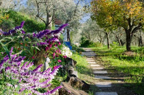 Jardín al aire libre en Armonia Alpujarra Eco Accommodation