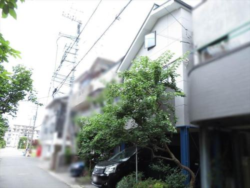 The surrounding neighborhood or a neighborhood close to the guest house