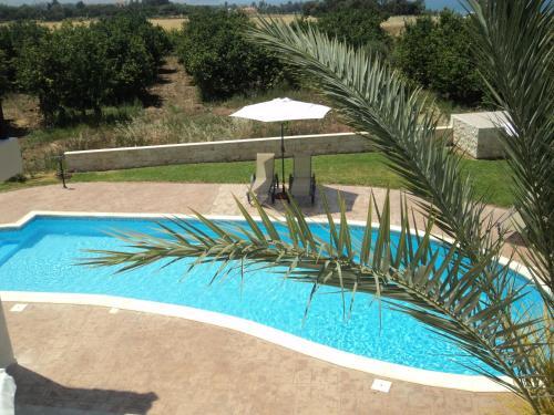 The swimming pool at or near Citrus Grove Villa