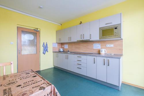 Кухня или мини-кухня в Ubytovna u nádraži
