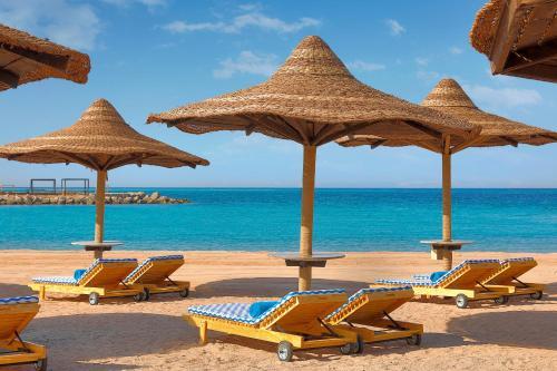 Hilton Hurghada Plaza Hotel, Hurghada – Prețuri actualizate 2021