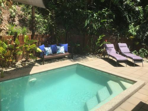 The swimming pool at or near Forest Views Daintree