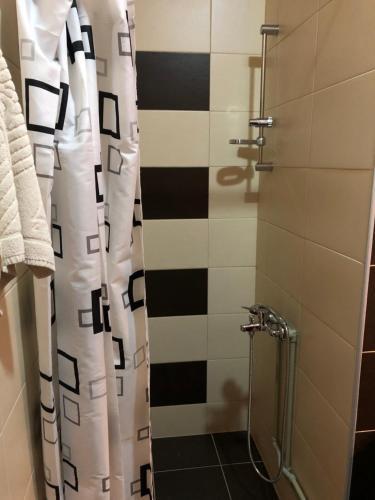 """A bathroom at Apartmani """"Rim Paris"""""""