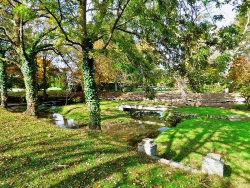 A garden outside Château de Gilly