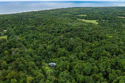 A bird's-eye view of Cape Tribulation Holiday House