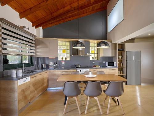 A kitchen or kitchenette at Villa Thallos