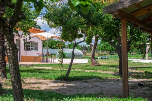 A garden outside Quinta da Saudade