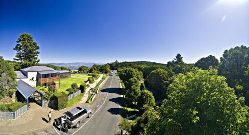 A bird's-eye view of O'Reilly's Rainforest Retreat