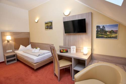 A television and/or entertainment center at Vulkanhotel balance&selfness ***S