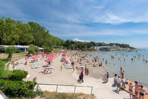 Pláž pri penzióne alebo v blízkosti