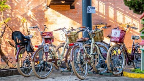 Ciclismo em Hotel Recanto da Serra ou nos arredores