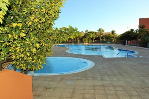 The swimming pool at or near El Médano. La Tejita Paradise.