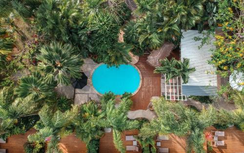 Rarotonga Daydreamer Resort