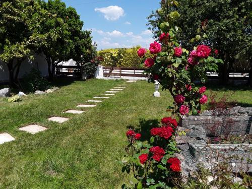 A garden outside Quinta Camargue