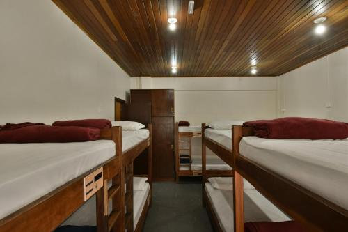 A bunk bed or bunk beds in a room at Hostel Chocolatchê