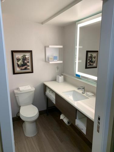 A bathroom at Hampton Inn Holland