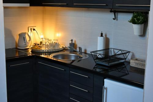 Kuhinja ili čajna kuhinja u objektu Gavra bar Apartments