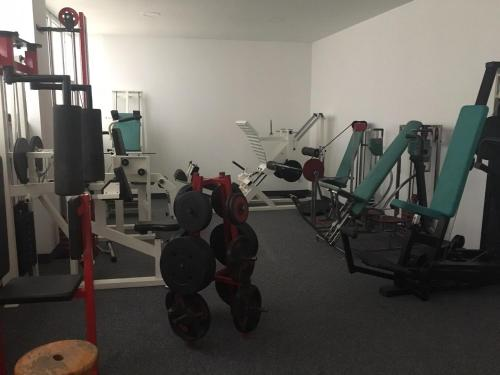 Фитнес-центр и/или тренажеры в L'Auberge D'Hélène Grenoble Centre