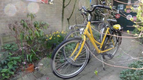 Biking at or in the surroundings of B&B Aan het Park Eindhoven