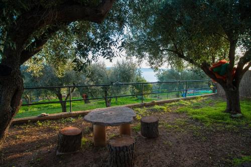A garden outside Villetta Fenosa