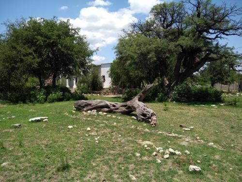 Un jardín fuera de Rio Quilpo La Antigua Finca López
