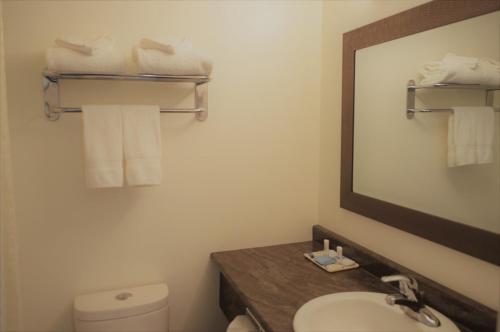 A bathroom at Western Traveller Motel