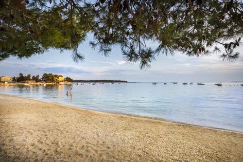 Plaża w kompleksie wypoczynkowym lub w pobliżu
