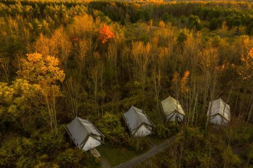A bird's-eye view of Firelight Camps