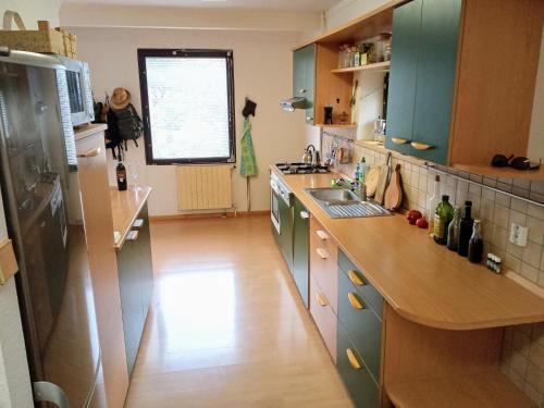 A kitchen or kitchenette at Cítovská 8 House, 20 mins to centre