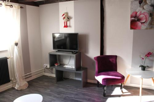 Un televizor și/sau centru de divertisment la Appartement les Violettes