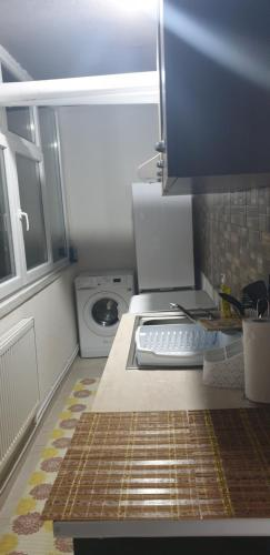 A kitchen or kitchenette at Garsonieră Bragadiru