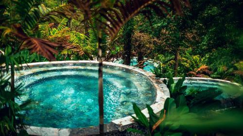 The swimming pool at or close to Nayara Tented Camp