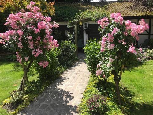 A garden outside West Lodge Hotel
