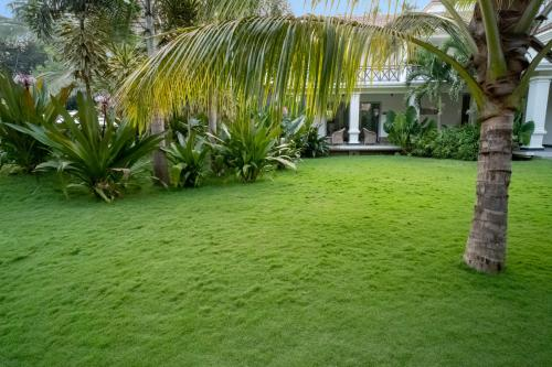 A garden outside Andores Resort And Spa