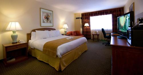 A bed or beds in a room at Allure Resort International Drive - IHG Collection