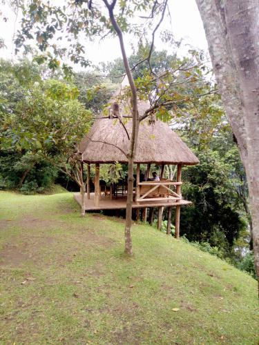 Access Budget Safaris