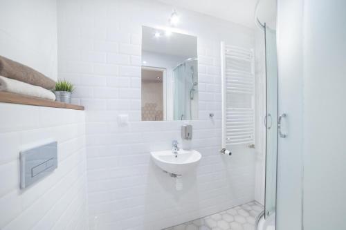 A bathroom at Dizzy Daisy Hostel
