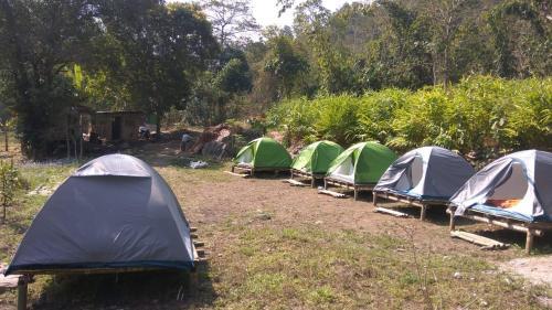 Darjeeling Nature Camp