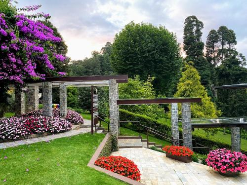 A garden outside Hotel Vila Inglesa
