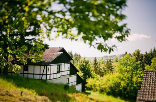 Ferienhaus Ahorn - [#125775]