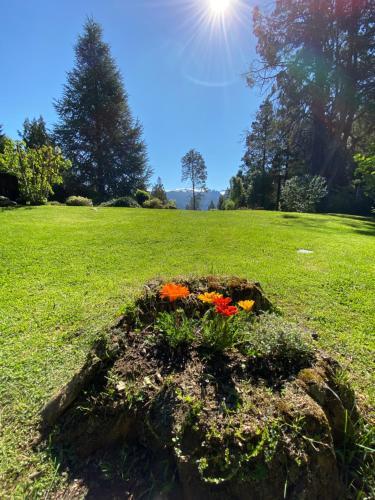 A garden outside Altos del Sur Cabañas de Montaña