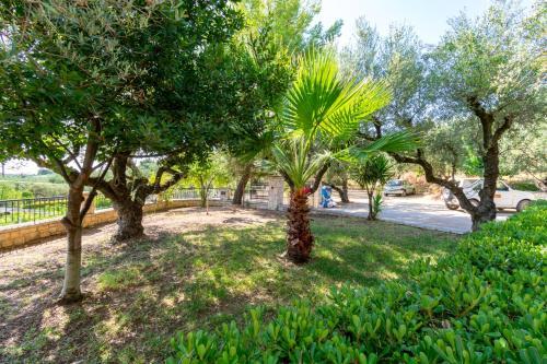 Κήπος έξω από το Villa San Andreas