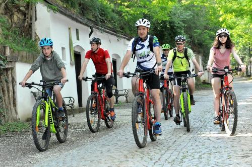 Катание на велосипеде по территории Hotel Eisenhuthaus или окрестностям