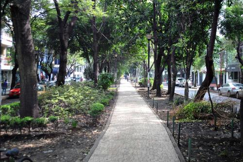 A garden outside Hotel Patriotismo