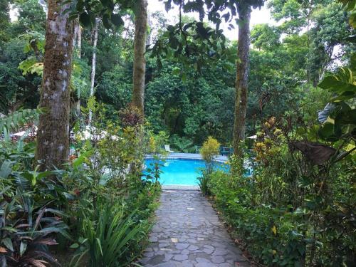 The swimming pool at or near Luna Lodge