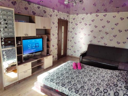 Телевизор и/или развлекательный центр в Апартаменты на Лесном Проспекте