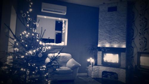 Luksusa Apartamenti during the winter